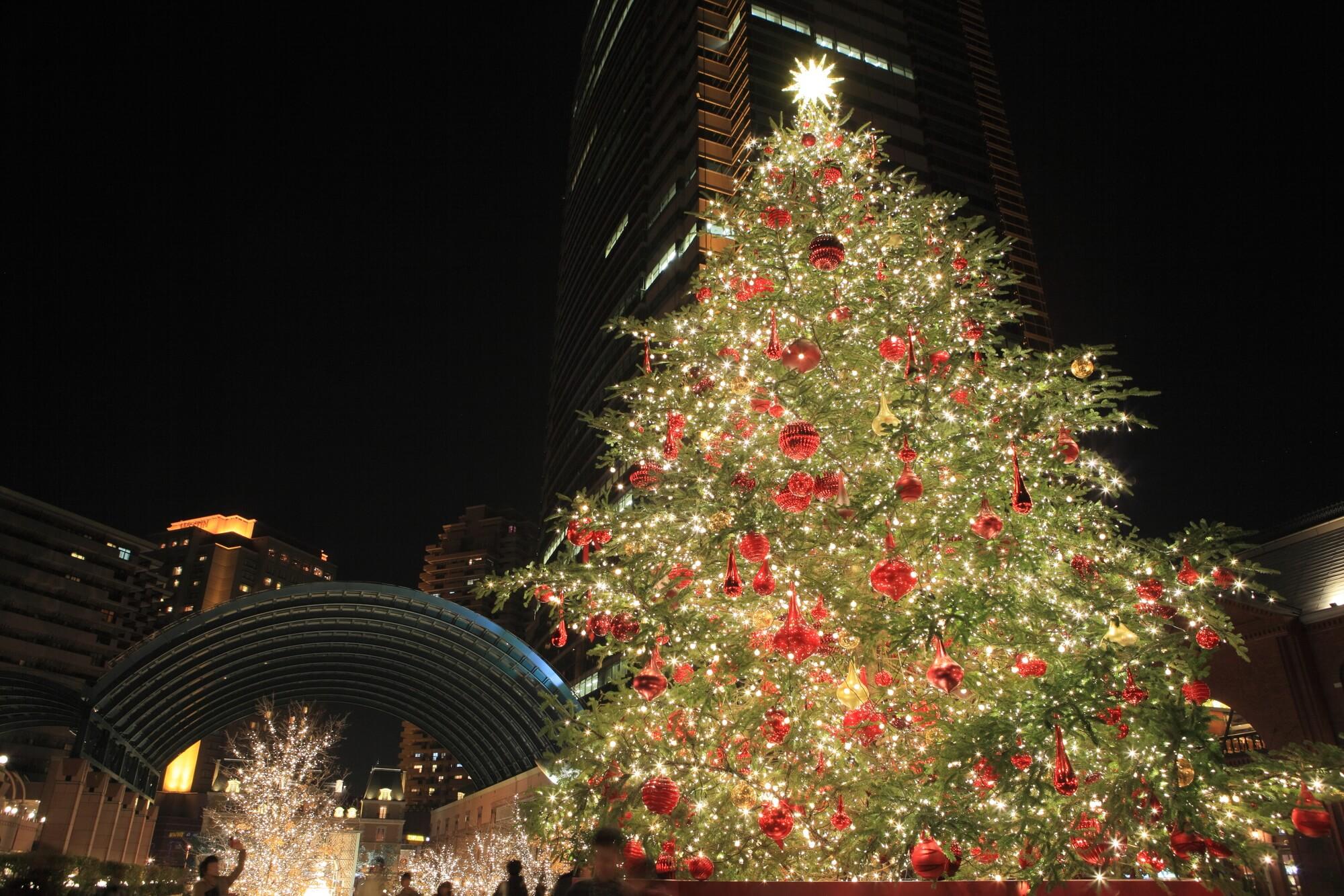クリスマスはカシミヤストールがおすすめ!【プレゼントに最適】